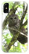 0304-002 - Barred Owl IPhone Case