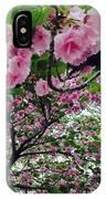 09032015056 IPhone Case