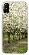 A Flowering Cherry Orchard IPhone Case