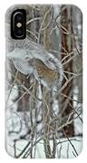 Acrobat Of The Forest IPhone Case