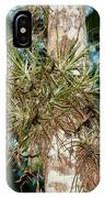 Air Plants In Grupo Coba At The Coba Ruins  IPhone Case