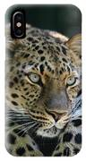 Amur Leopard #2 IPhone Case