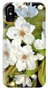 Apple Blossoms 0936 IPhone Case