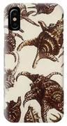 Aquatic Animals - Conch - Shells - Snails IPhone Case
