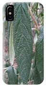 Art Of Nature, Leave Skin IPhone Case