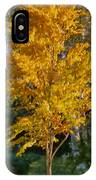 Artistic Fall Colours IPhone Case