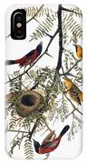 Audubon: Oriole IPhone Case