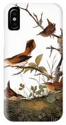 Audubon: Wren IPhone Case