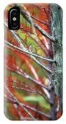 Autumn Colors 25 IPhone Case