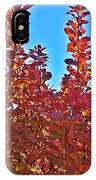 Autumn Reds  IPhone Case