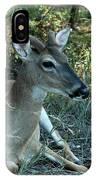 Baby Buck IPhone Case