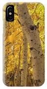 Beautiful Fall Color In California IPhone Case