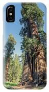 Big Tree Trail - Sequoia National Park - California IPhone Case
