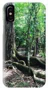 Blue Hole National Park IPhone Case