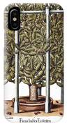Cactus: Opuntia, 1613 IPhone Case