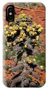 Cactus Outside The Chapel Of The Holy Cross IPhone Case
