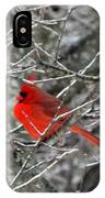 Cardinal On Icy Branches IPhone Case