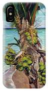 Coconuts On Beach IPhone Case
