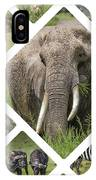 Collage Of Animals From Tanzania  IPhone Case