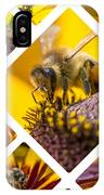 Collage Of Western Honey Bee IPhone Case