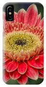 Colorful Daisy IPhone Case
