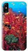 Coral Reef Scene IPhone Case