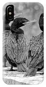 Cormorant Trio IPhone Case