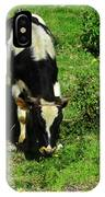 Cow In A Field IPhone Case