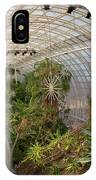 Crystal Bridge IPhone Case