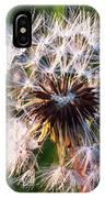 Dandelion In Nature IPhone Case