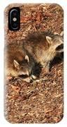 Green Heron Babies IPhone Case