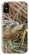European Bittern IPhone Case