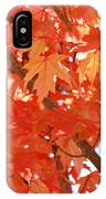 Fall Trees Colorful Autumn Leaves Art Baslee Troutman IPhone Case