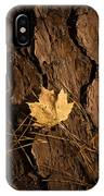 Fallen Leaf IPhone Case
