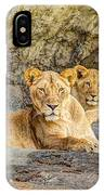 Female Lion And Cub Hdr IPhone Case