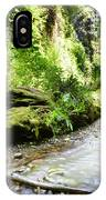 Fern Canyon, Redwood National Park IPhone Case