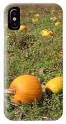 Field Of Pumpkins IPhone Case