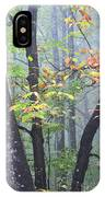 Foggy Fall Forest IPhone Case