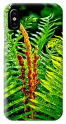 Fern Fractals In Nature IPhone Case