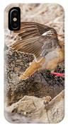 Galapagos Dove In Espanola Island. IPhone Case
