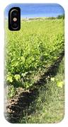 Grapevines In A Vineyard IPhone Case