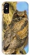 Great Horned Owl Fledgling  IPhone Case