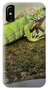 Green Iguana Iguana Iguana, Tarcoles IPhone Case