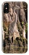 Heron And Cypress Knees IPhone Case