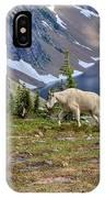 Hidden Landscape In Widescape IPhone Case