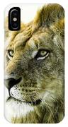 Intensity IPhone Case