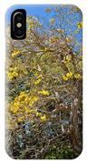 Jerusalem Thorn Tree IPhone Case