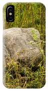 Large Rock And Purple Asters IPhone Case