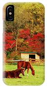 Lazy Autumn Day IPhone Case