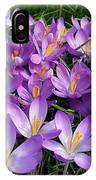 Let It Spring IPhone Case